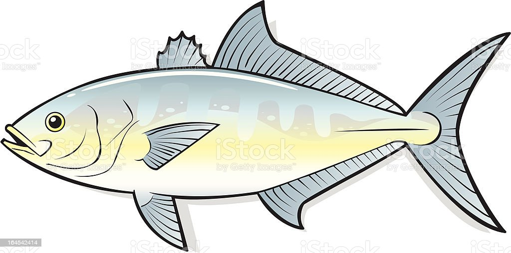 SEAFOOD FISH royalty-free stock vector art