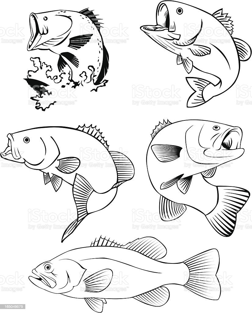 ALL BASS royalty-free stock vector art