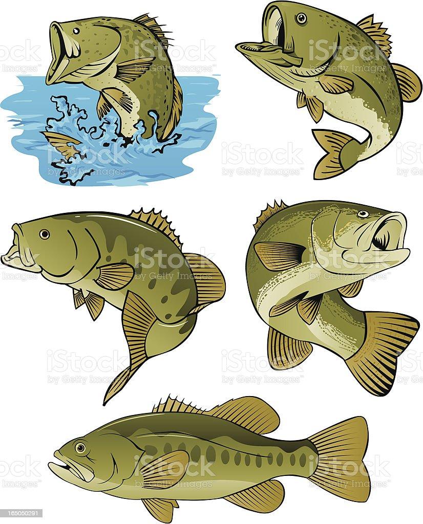 LOTS OF BASS vector art illustration