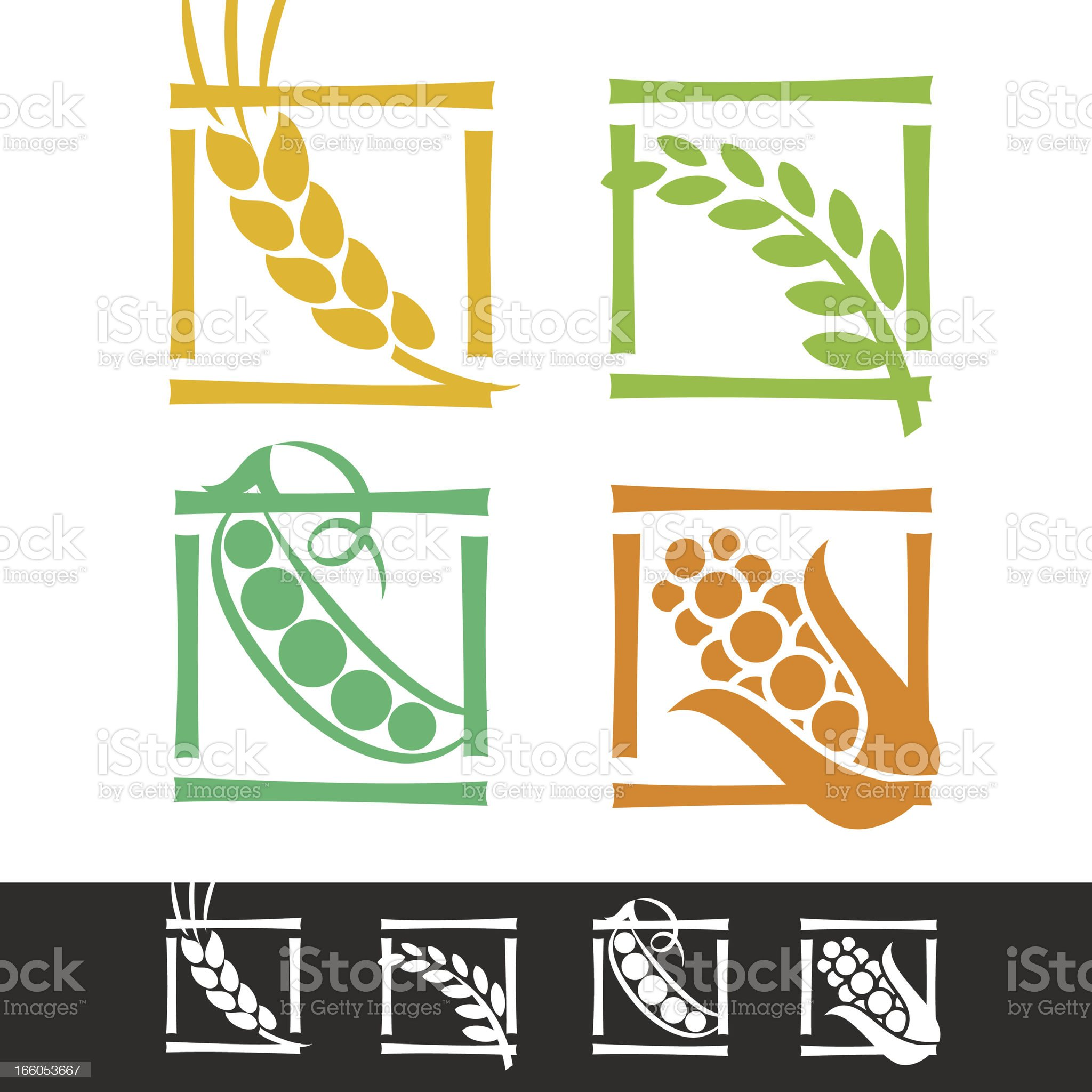 SET OF CEREAL EARS royalty-free stock vector art