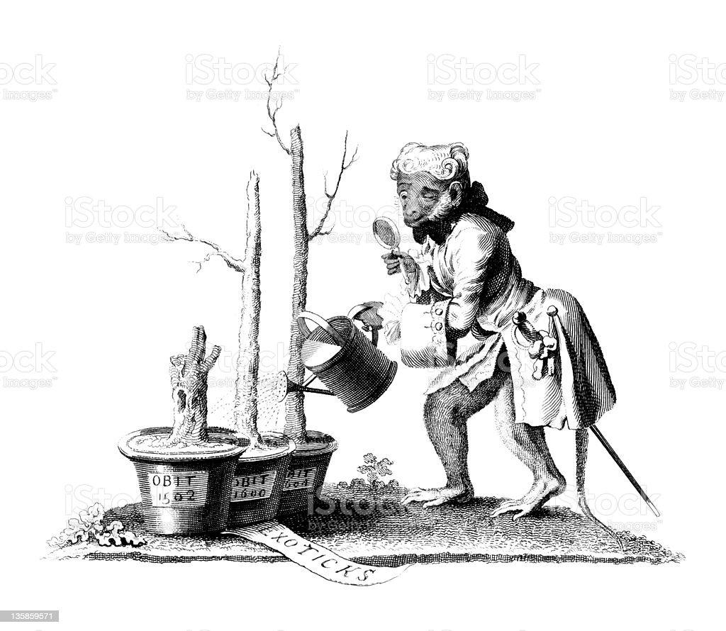 18th Century Political Cartoon of Monkey Watering Dead Plants vector art illustration