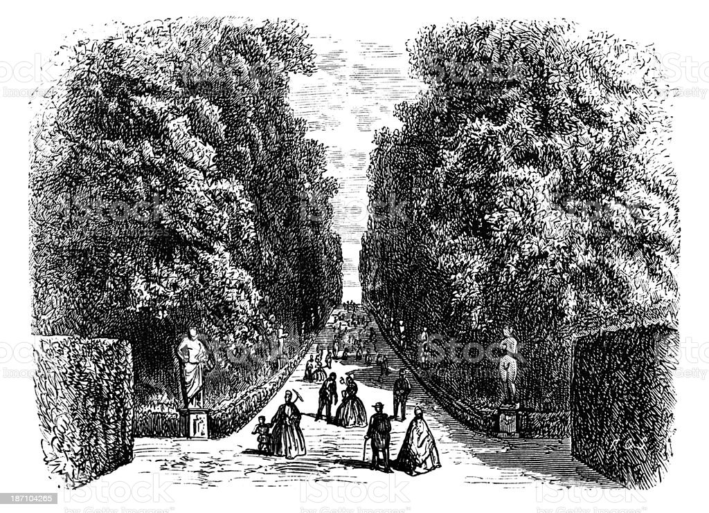 19th century engraving of Boboli Gardens, Florence, Italy vector art illustration