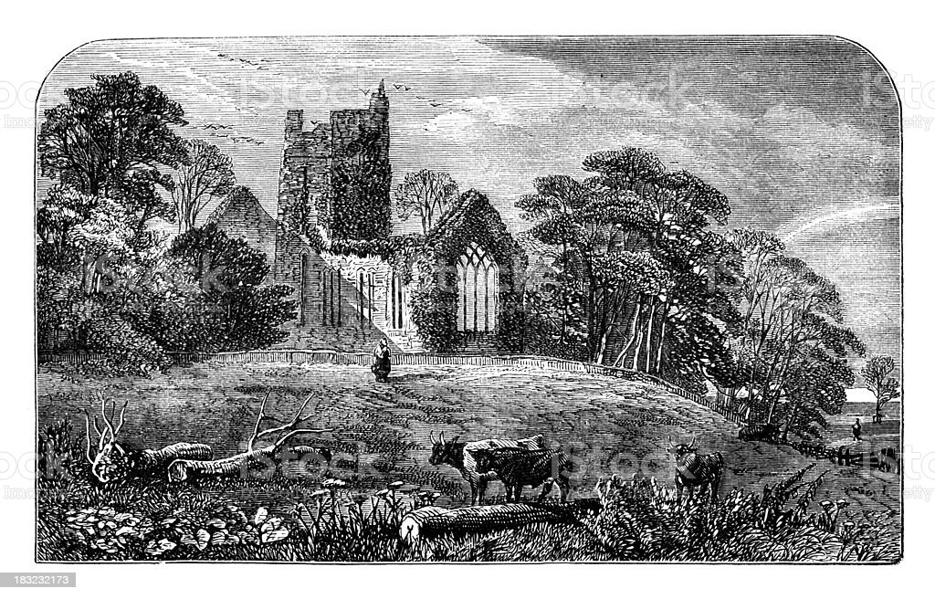 19th century engraving of Muckross Abbey, Killarney National Par royalty-free stock vector art