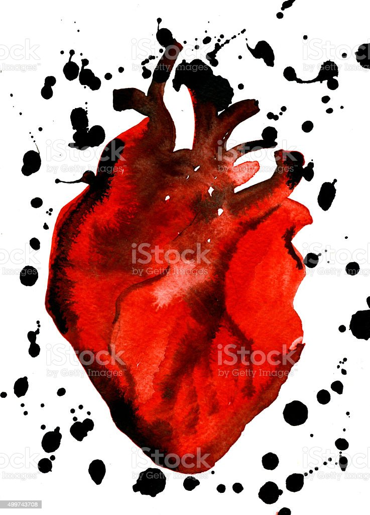 Abstract aquarelle human red-blood heart vector art illustration