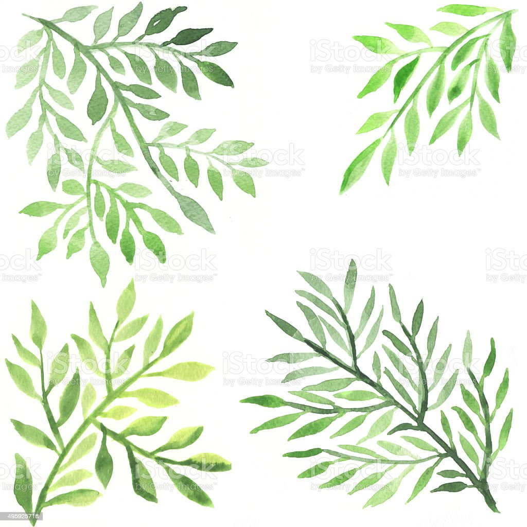 Abstract foliate watercolor paintings vector art illustration