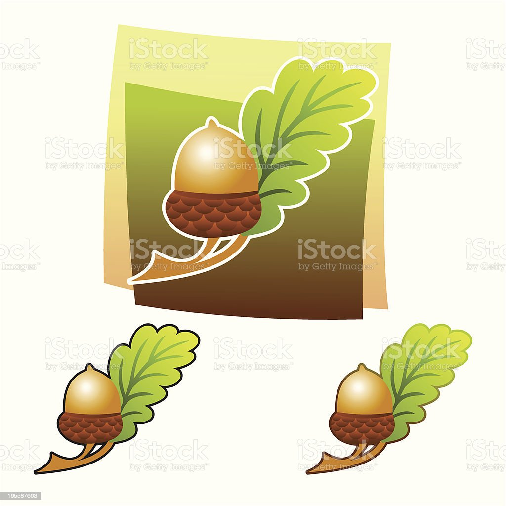 Acorn royalty-free stock vector art