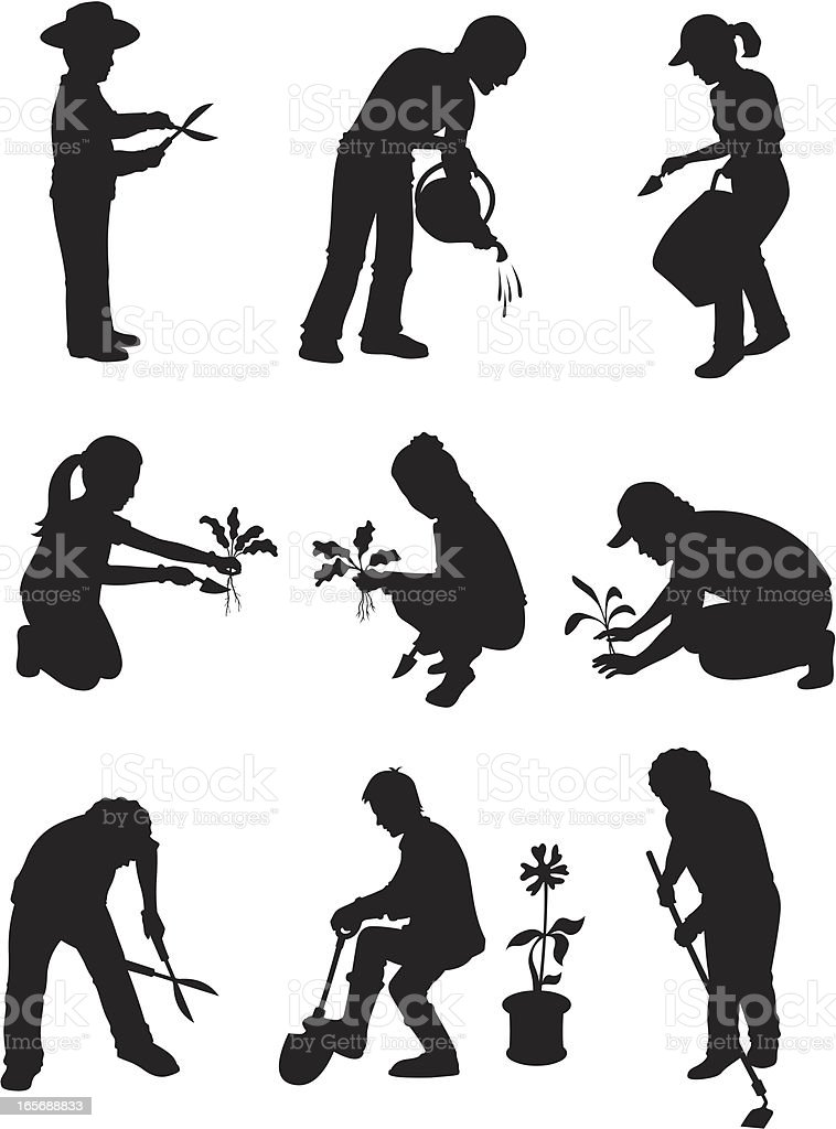 Adults working in a garden royalty-free stock vector art