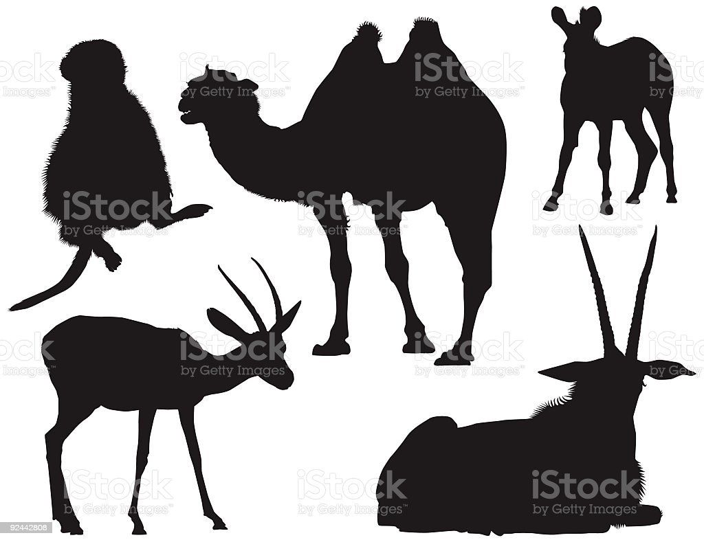 African Animal Silhouettes ( Vector ) vector art illustration