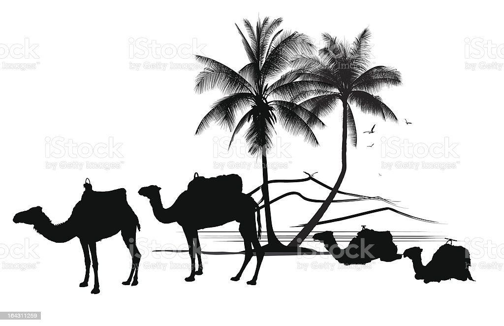 african desert with camels and palm tree vector art illustration