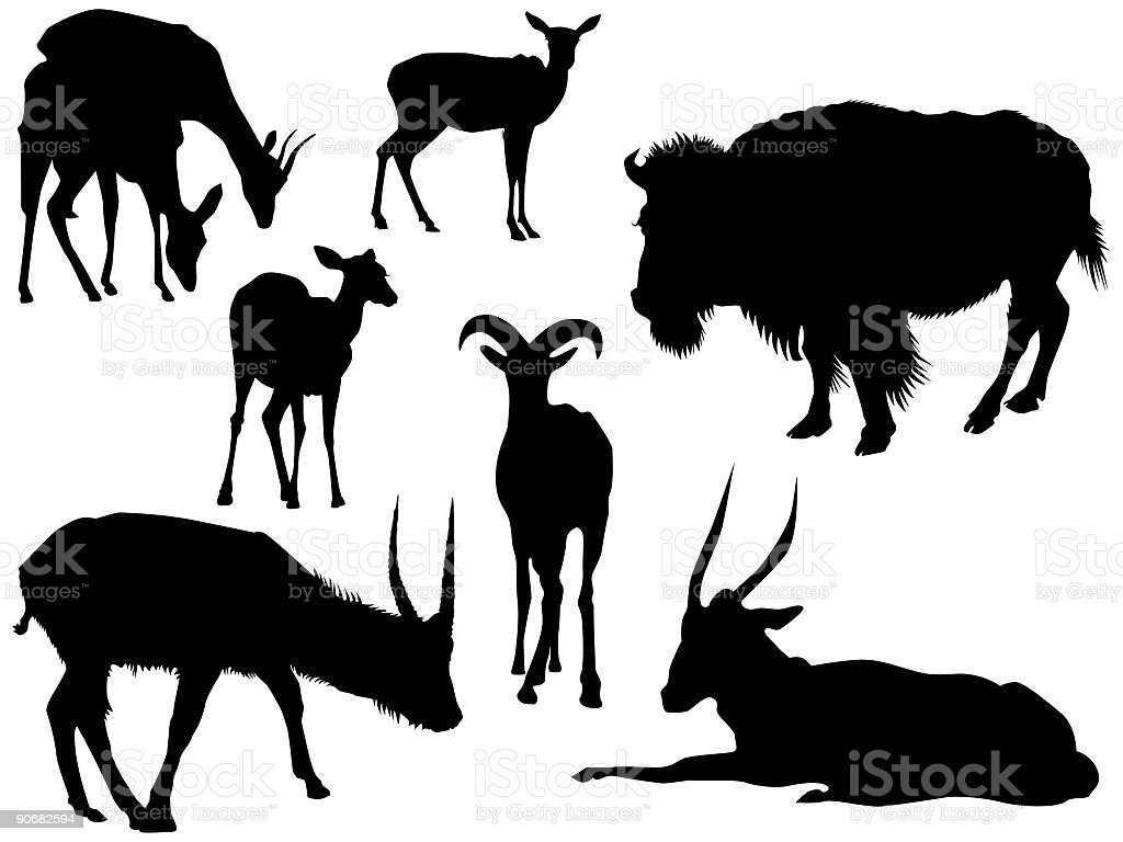 African Prairie Animals (Vector) vector art illustration