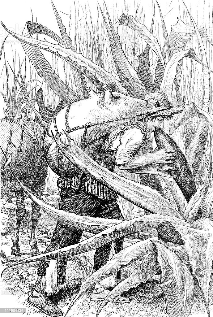 Agave Harvester for Tequila, circa 1880s Mexico vector art illustration