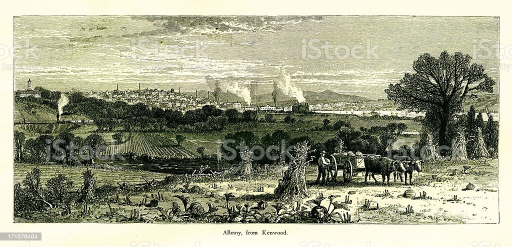 Albany, New York, wood engraving (1872) vector art illustration