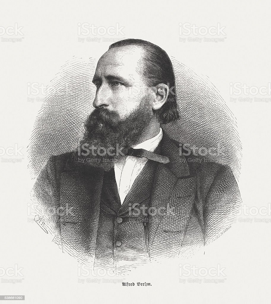 Alfred Brehm (1829-1884), German zoologist, wood engraving, published in 1869 vector art illustration