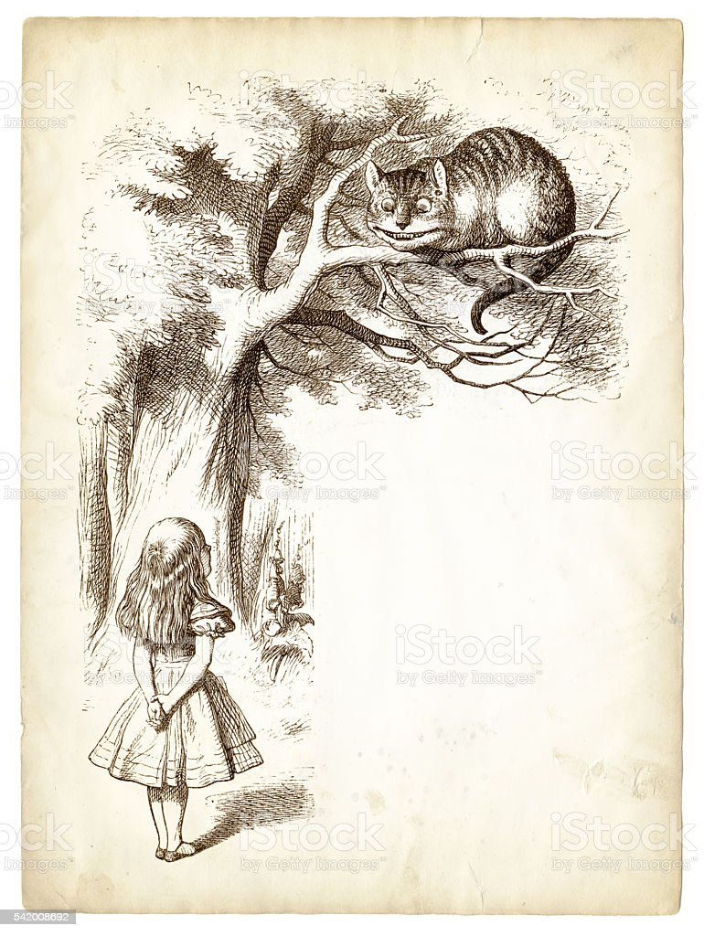 Alice and the Cheshire cat engraving 1898 vector art illustration
