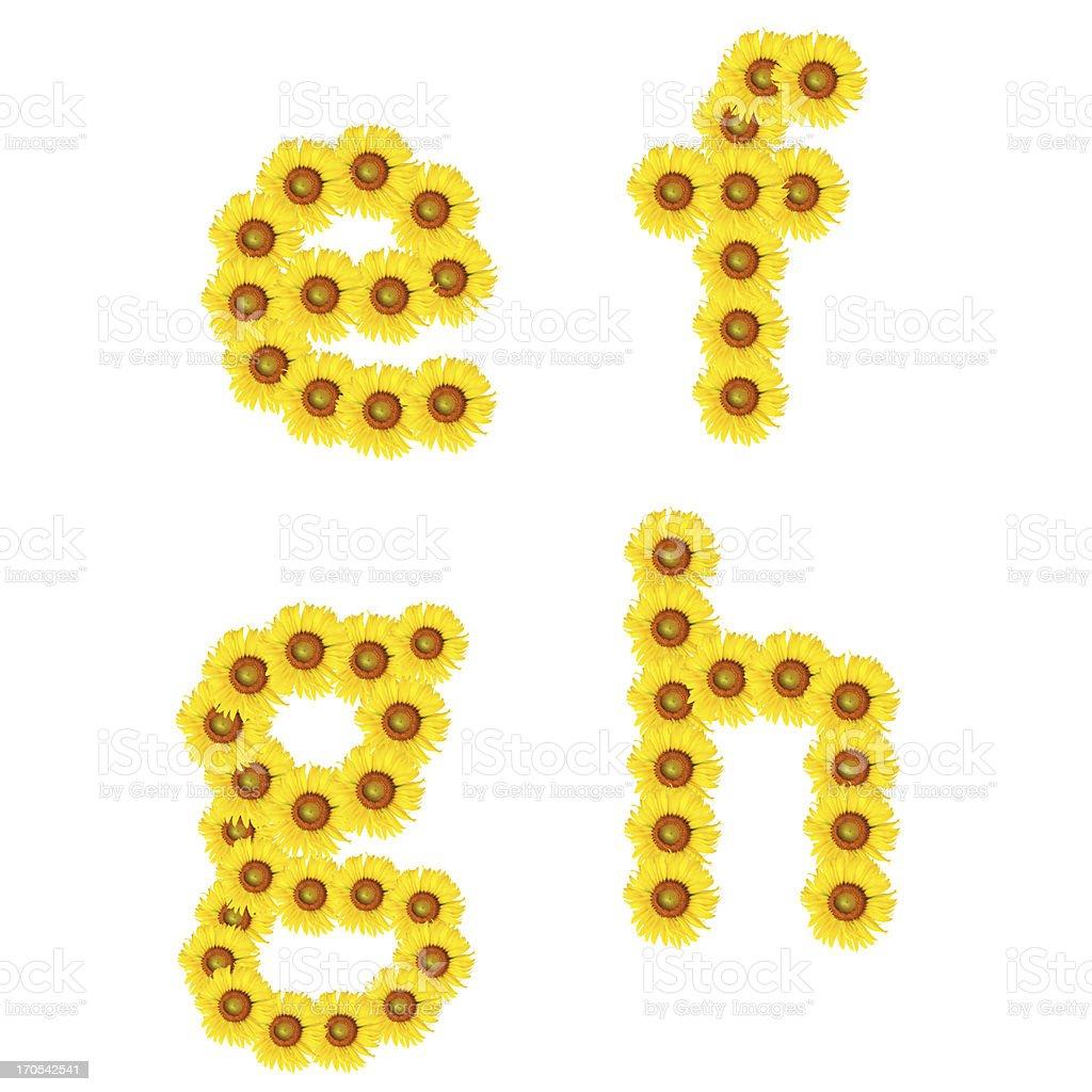 alphabet from sunflower royalty-free stock vector art