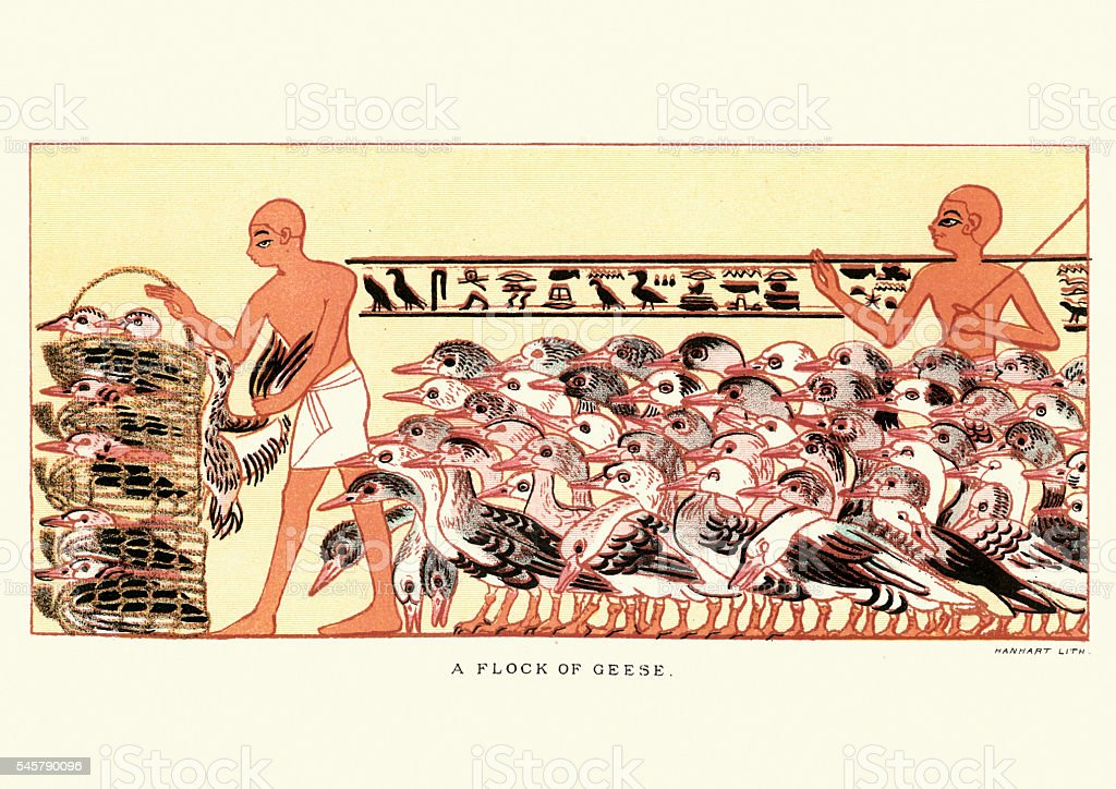 Ancient egyptian farmers herding a flock of geese vector art illustration