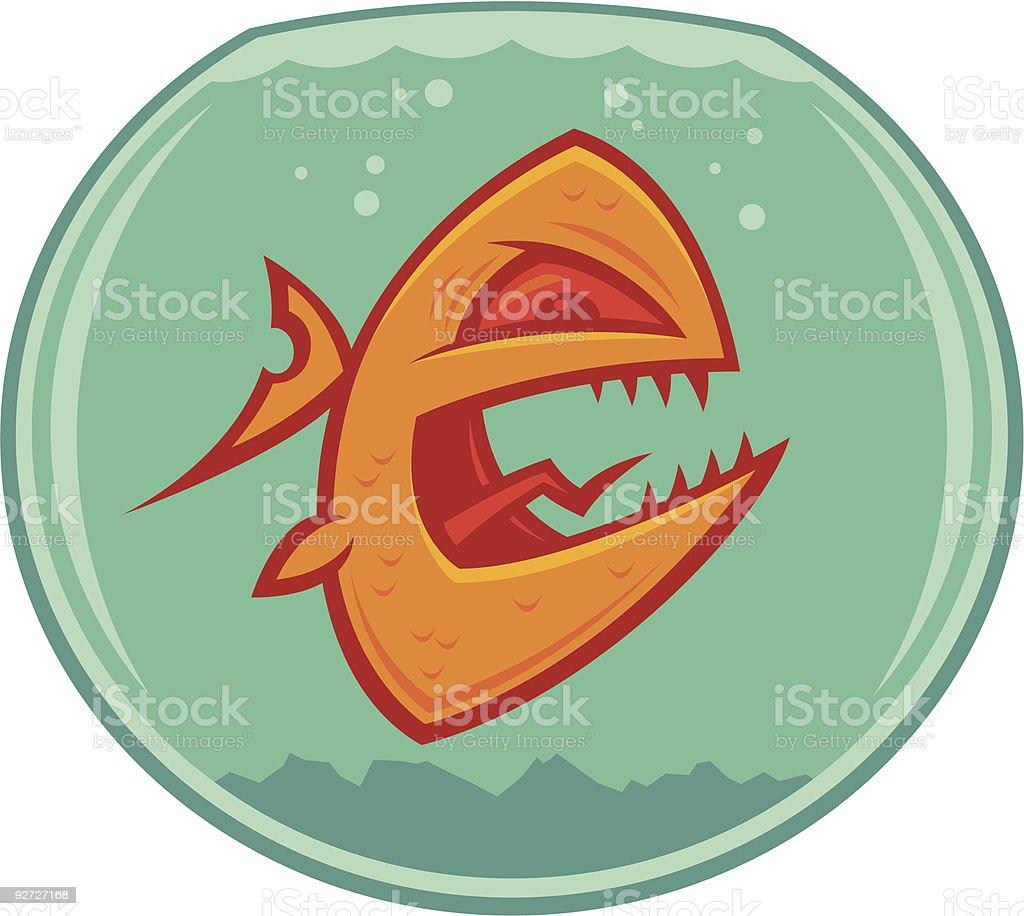 Angry Goldfish vector art illustration
