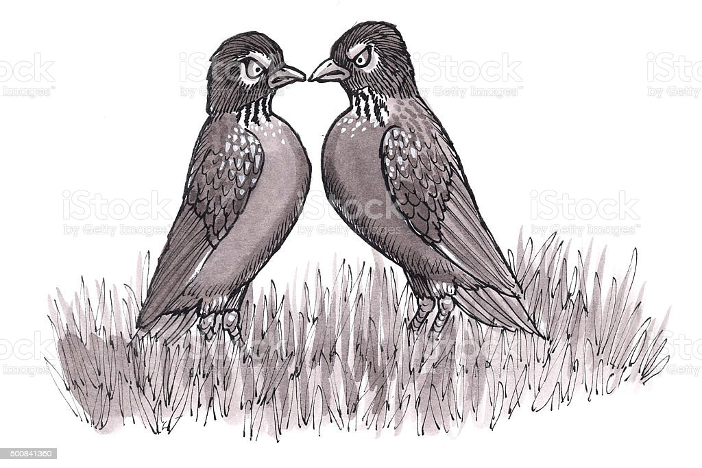 Wütend Robins (Comic Lizenzfreies vektor illustration