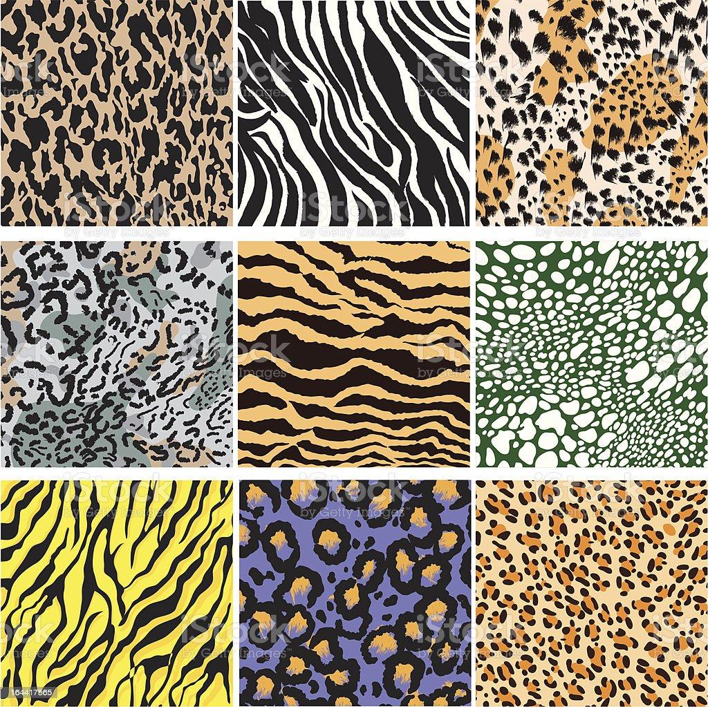 Animal Skin Set vector art illustration