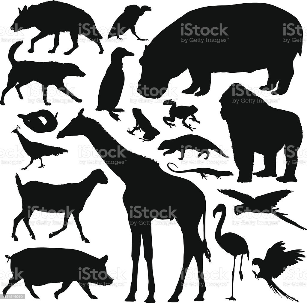 Animals royalty-free stock vector art