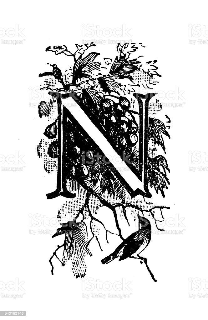 Antique children's book comic illustration: Ornate letter N vector art illustration
