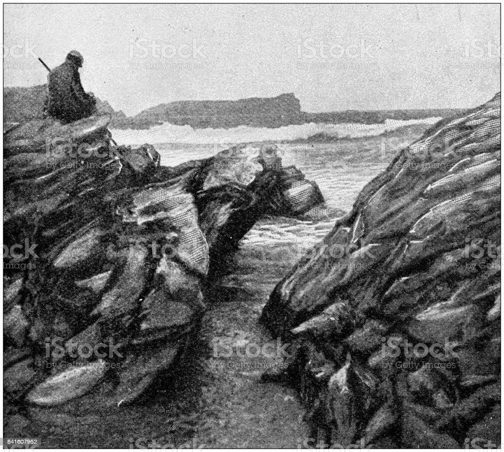 Antique illustration: Man on cliff vector art illustration