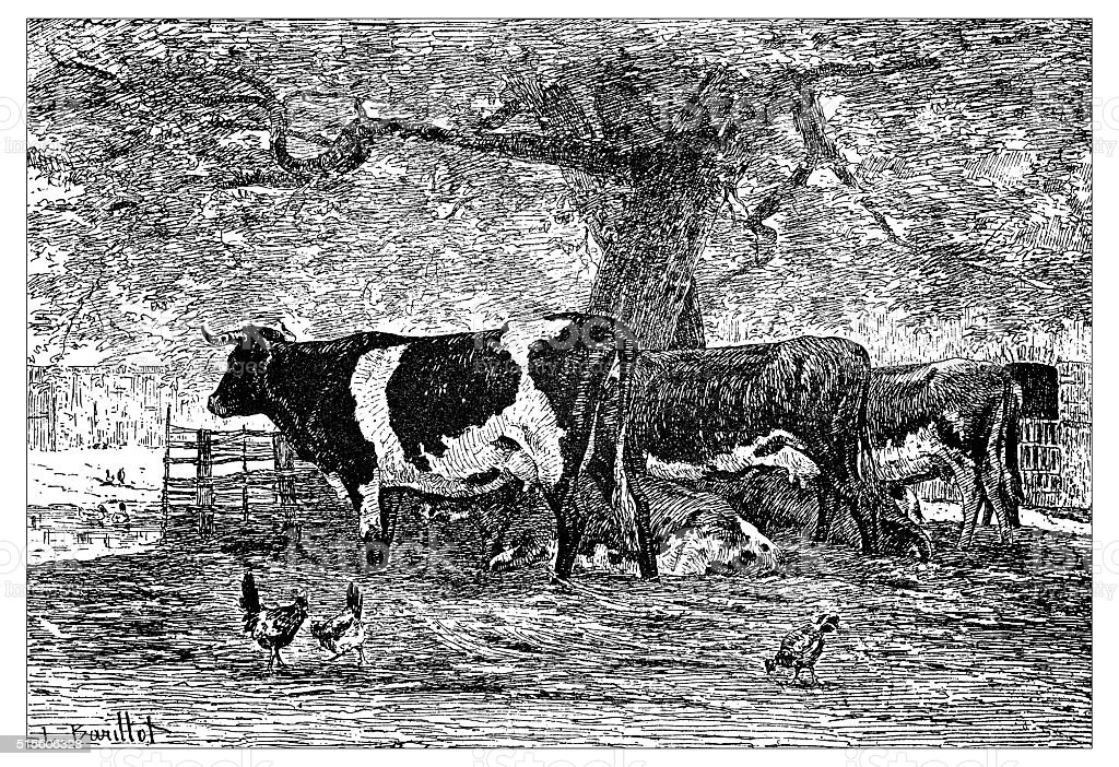 Antique illustration of animals in a French farm vector art illustration