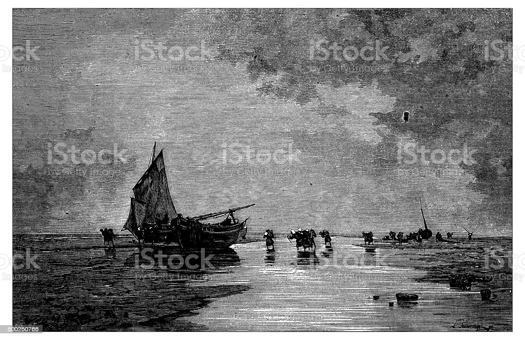 Antique illustration of beach during low tide with ships vector art illustration