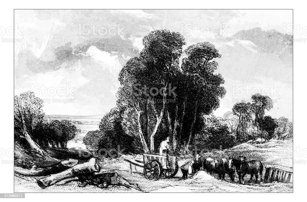 Antique illustration of countryside landscape vector art illustration