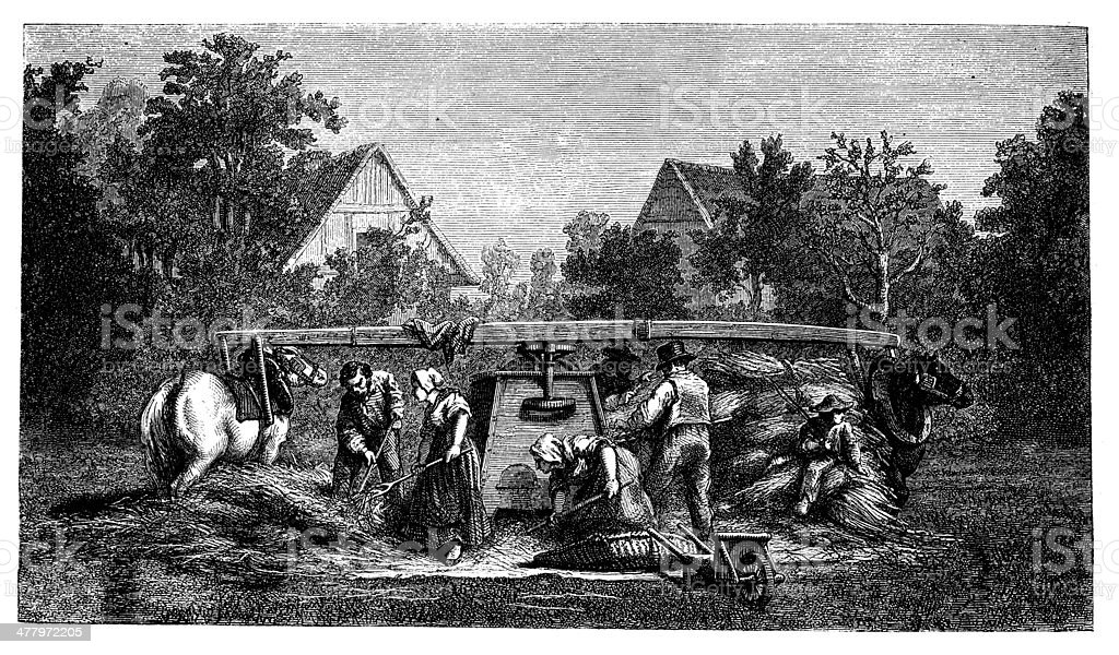 Antique illustration of farmers working royalty-free stock vector art