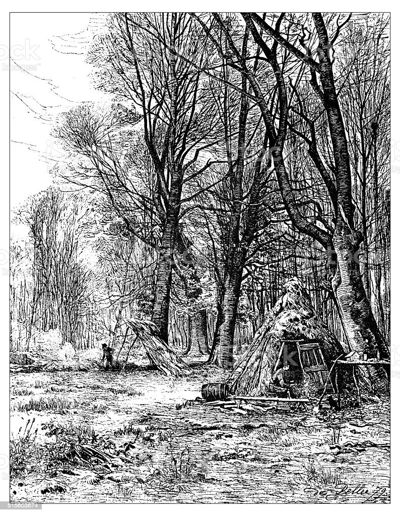 Antique illustration of forest with huts vector art illustration