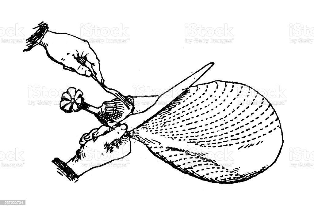 Antique illustration of hands cutting ham vector art illustration