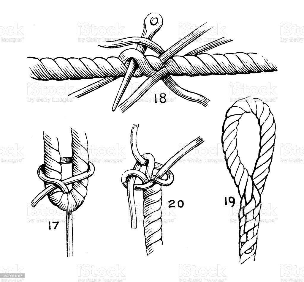 Antique illustration of knots royalty-free stock vector art