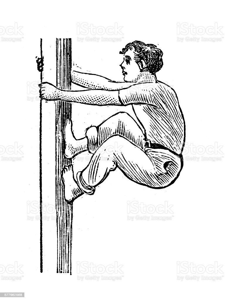 Antique illustration of sports and exercises: Artistic Gymnastic The Mast vector art illustration