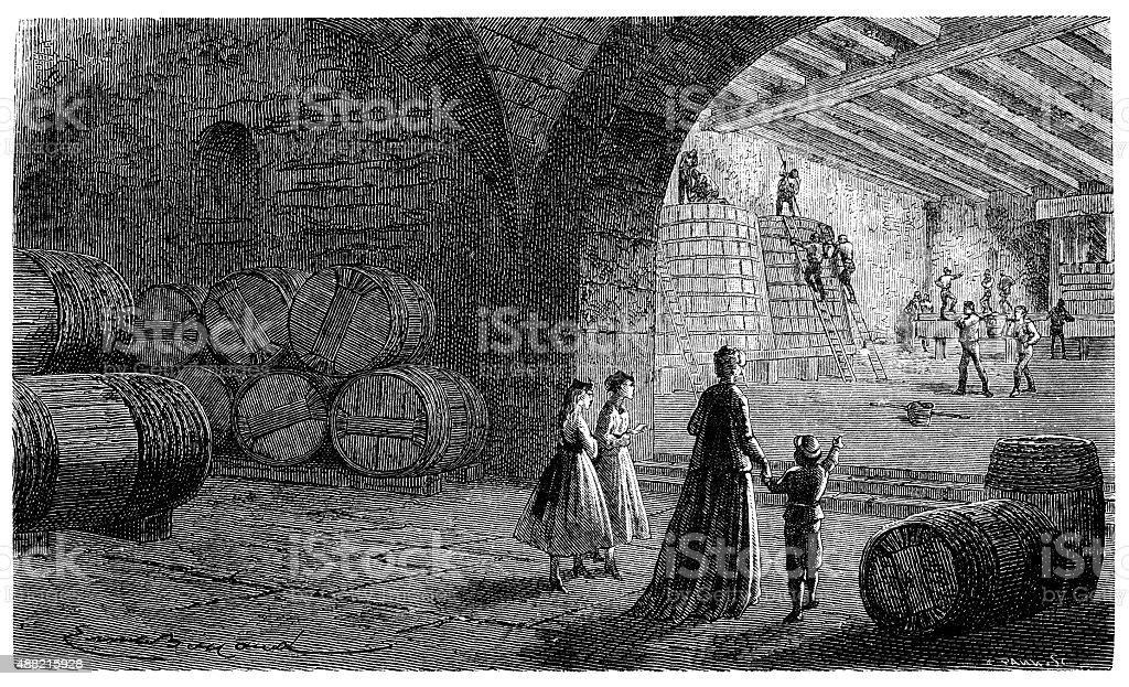 Antique illustration of wine cellar vector art illustration