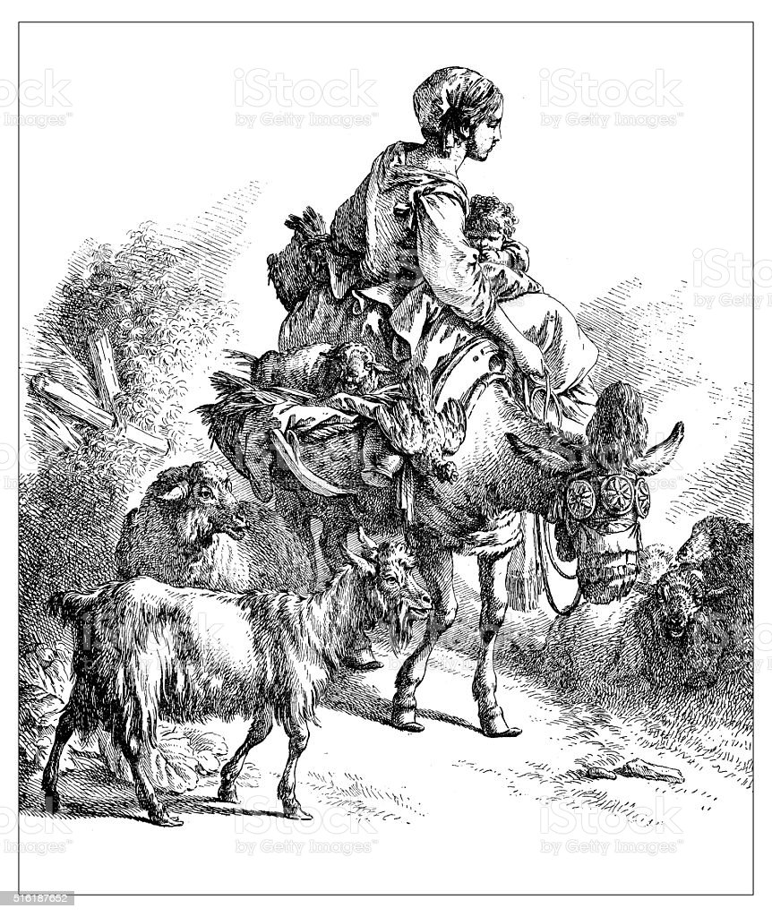 Antique illustration of woman with baby riding a donkey vector art illustration