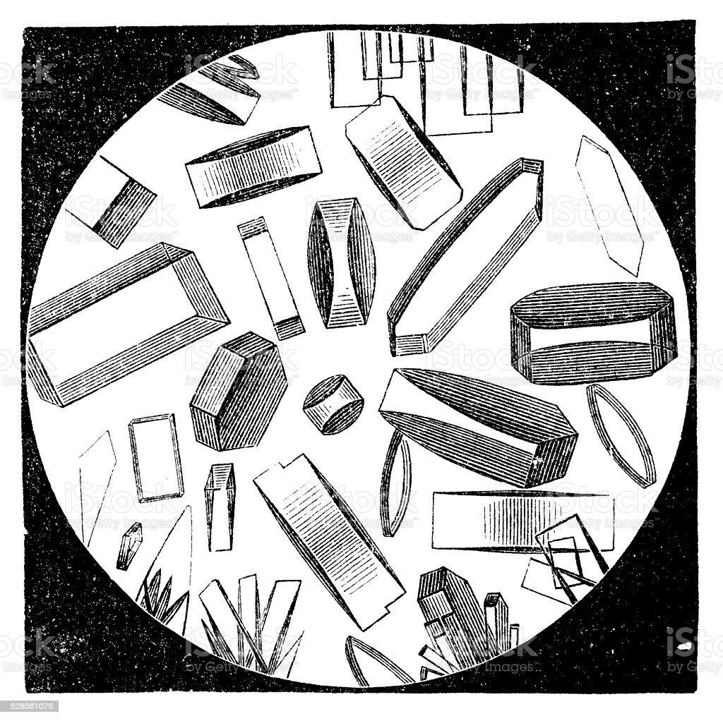 Antique medical scientific illustration high-resolution: Creatinine vector art illustration