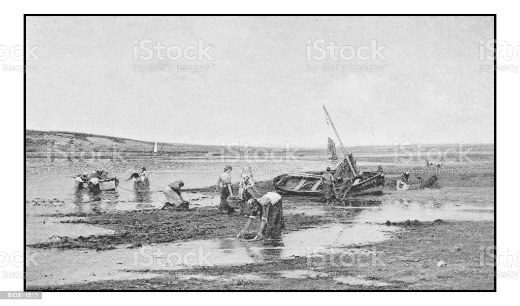 Antique photo of paintings: Low tide vector art illustration