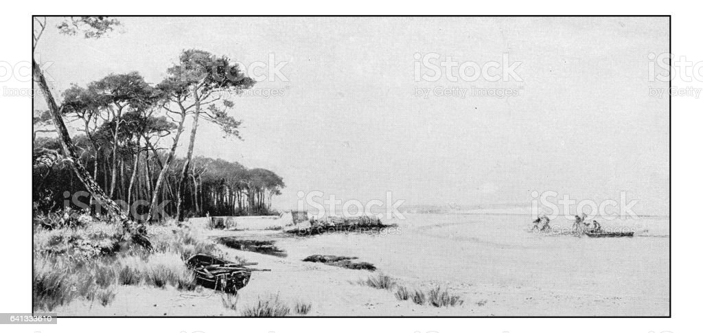 Antique photo of paintings: Salmon Fishing, Christchurch Bay vector art illustration