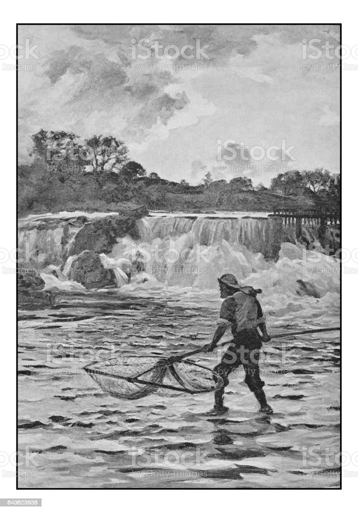 Antique photo of paintings: Salmon fishing on the river Dee vector art illustration