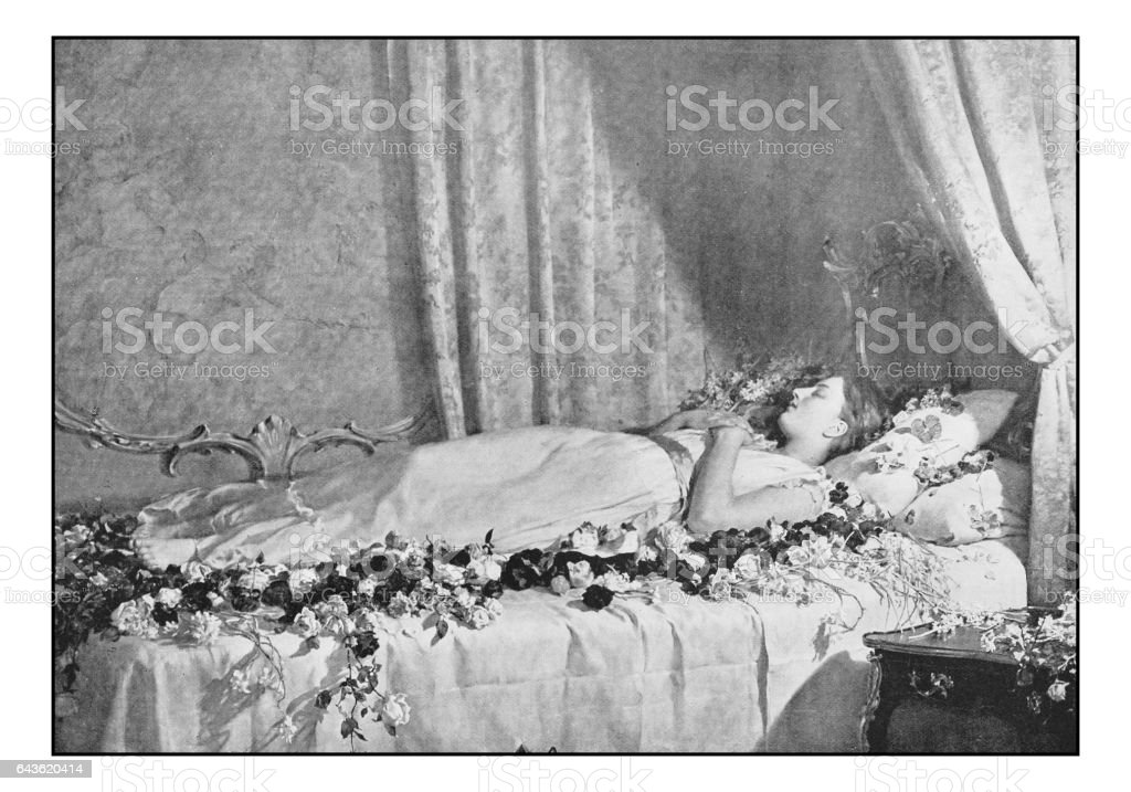 Antique photo of paintings: The death of Albine vector art illustration