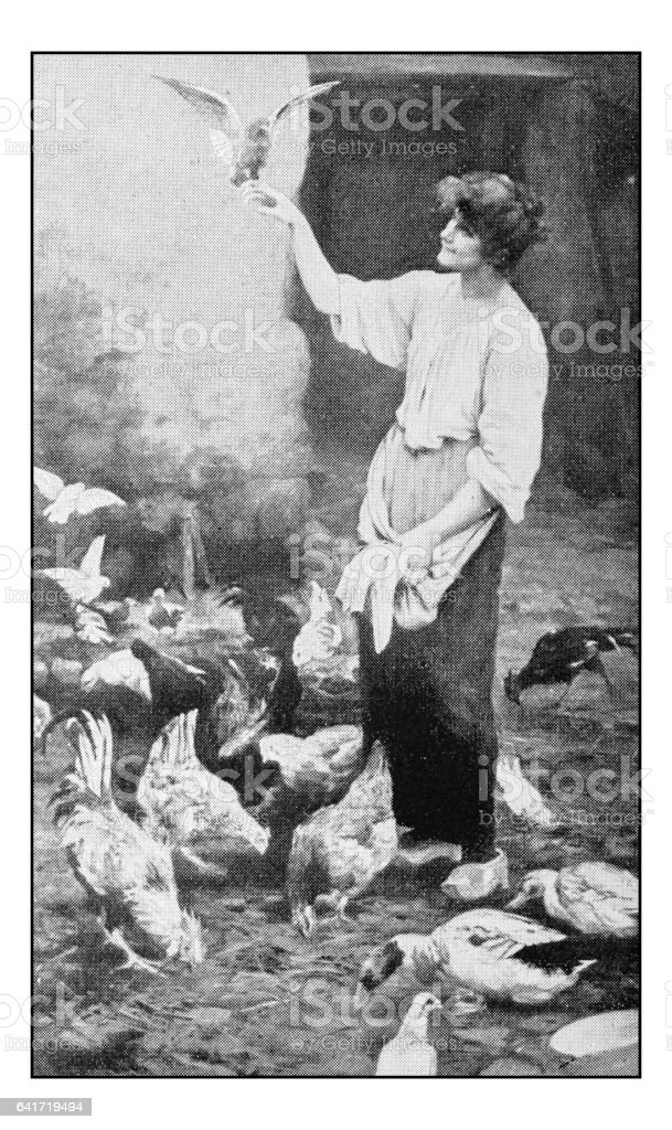Antique photo of paintings: Woman with birds vector art illustration