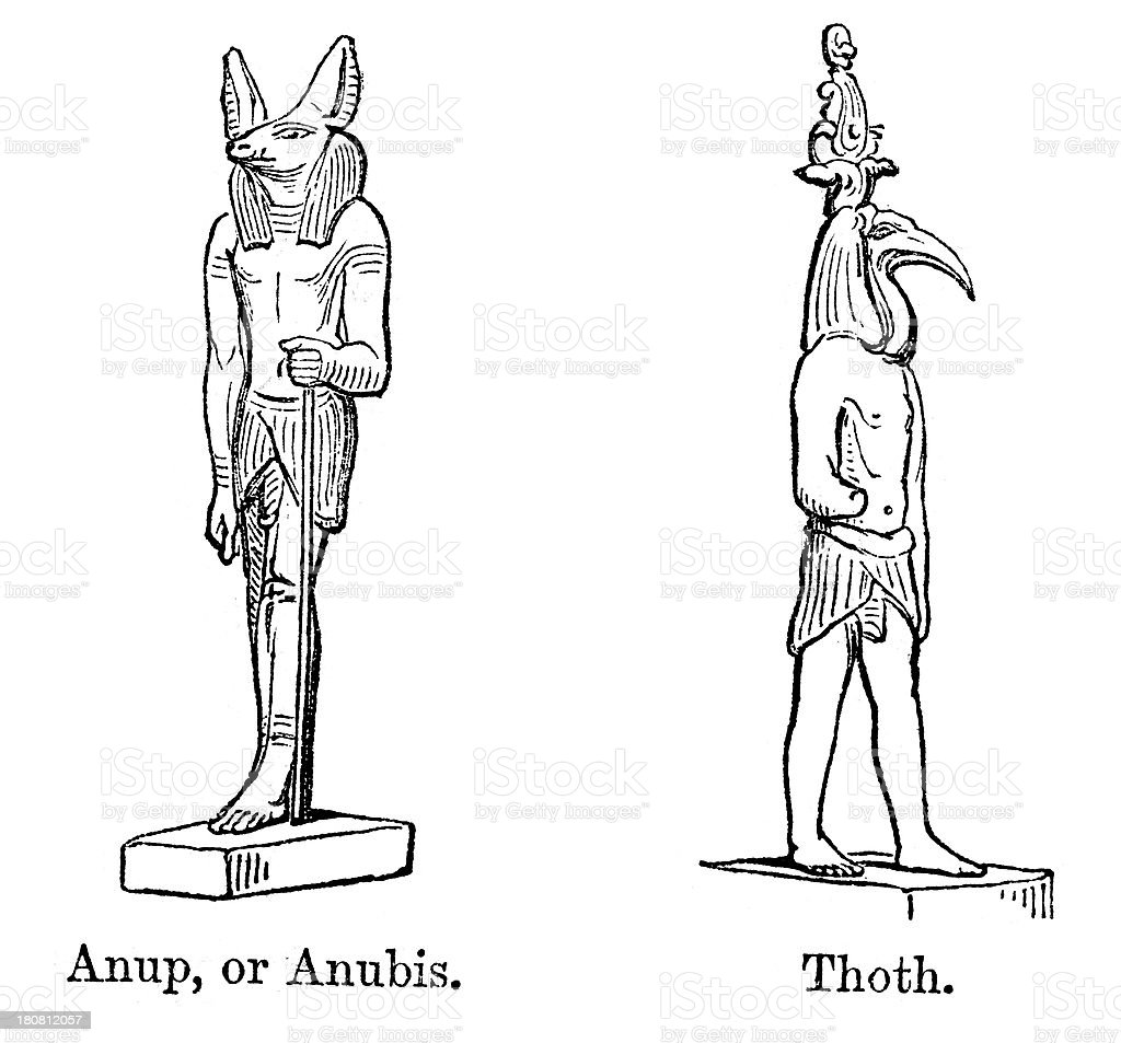 Anubis and Thoth royalty-free stock vector art