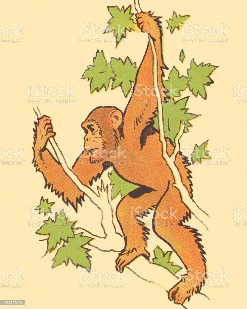Ape Hanging in a Tree vector art illustration