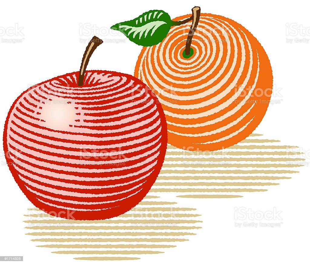 Apple and Orange royalty-free stock vector art