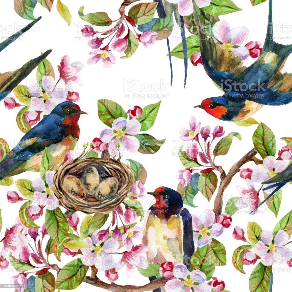 Apple blossom and swallows. vector art illustration