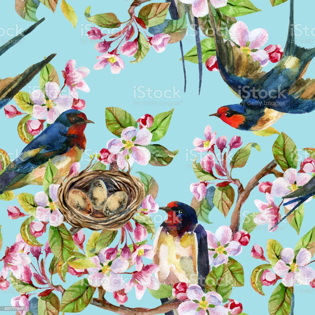 Apple blossom and swallows. vector art illustration