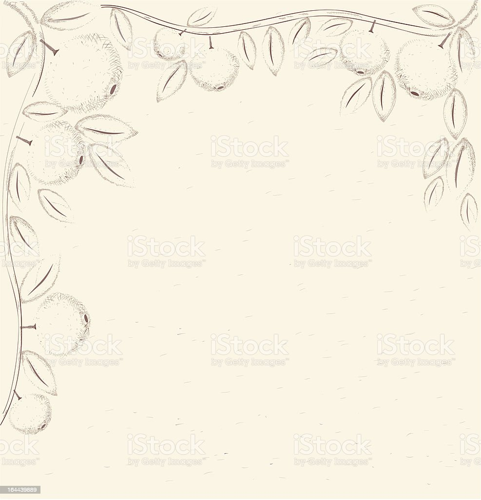 Apple Branch Pencil Drawing In Vintage Style vector art illustration