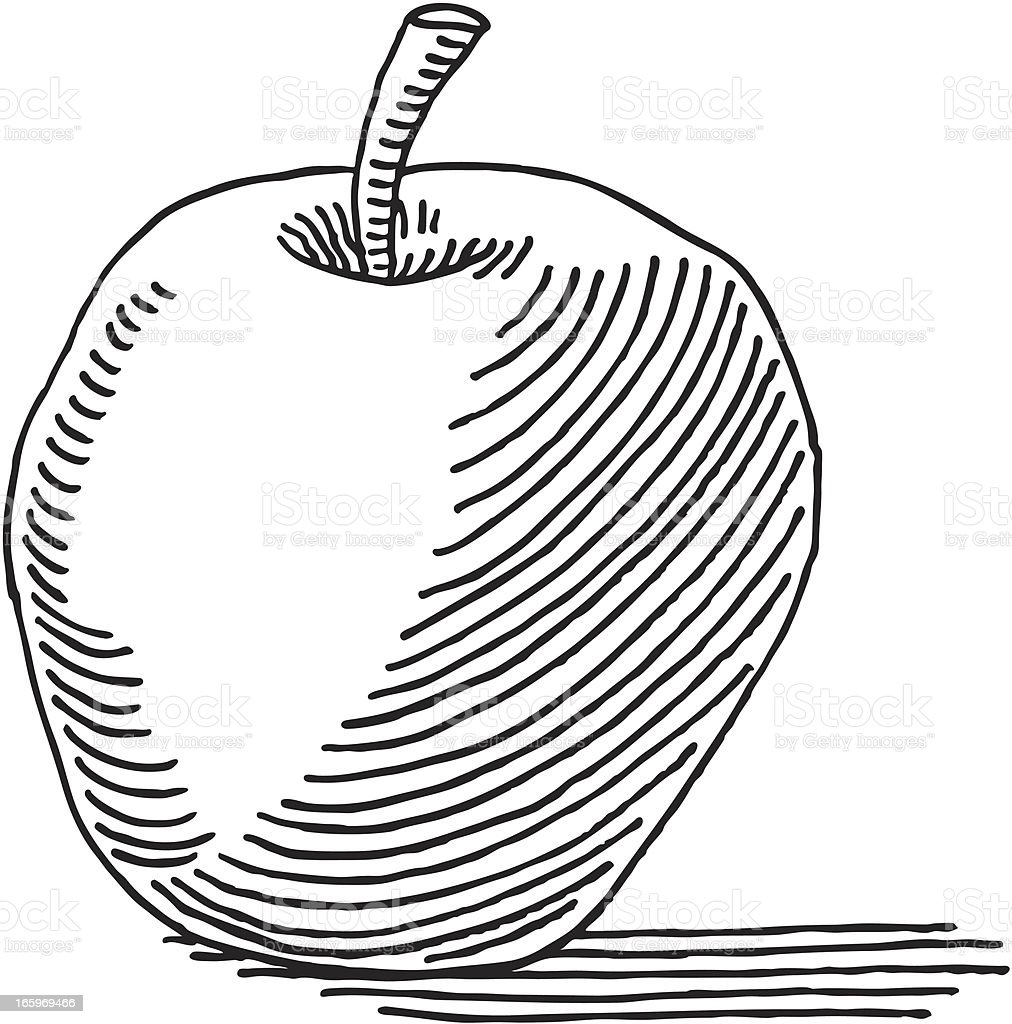 Apple Drawing royalty-free stock vector art