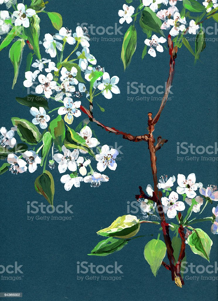 Apple in bloom royalty-free stock vector art